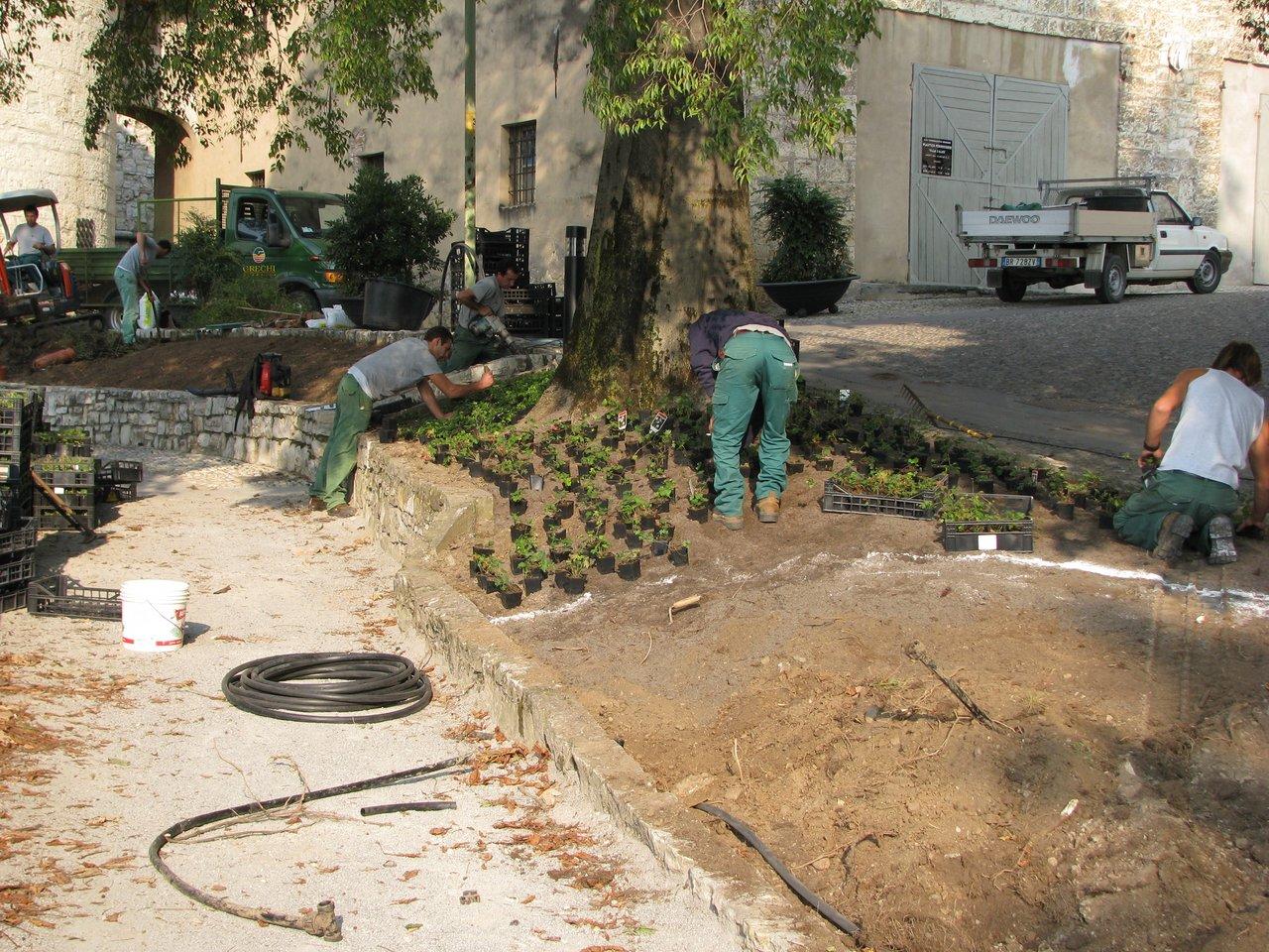 Giardini piani di mantenimento grechi giardini for Piani di camera aggiunta