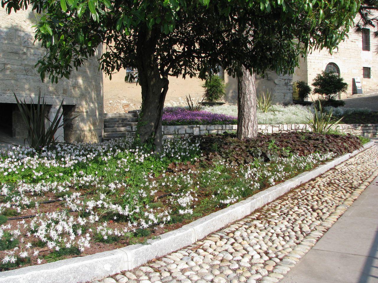 Il giardino del castello i nostri lavori grechi giardini for Aiuole profumate