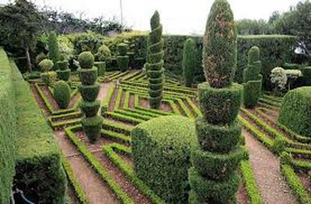 Larte Topiaria Curiosità Grechi Giardini