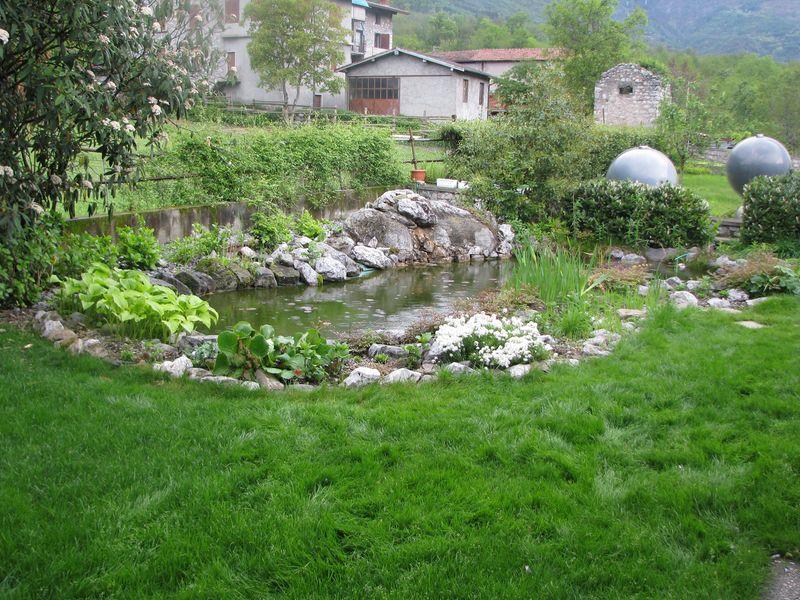 Biolago per pesci realizzazione biolago e biopiscina for Piscine laghetto per pesci